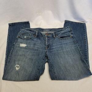 Ann Taylor Loft Boyfriend Distressed Jeans